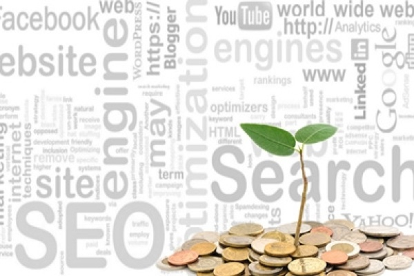 Benefits of Investing in SEO and SMO for Small Businesses